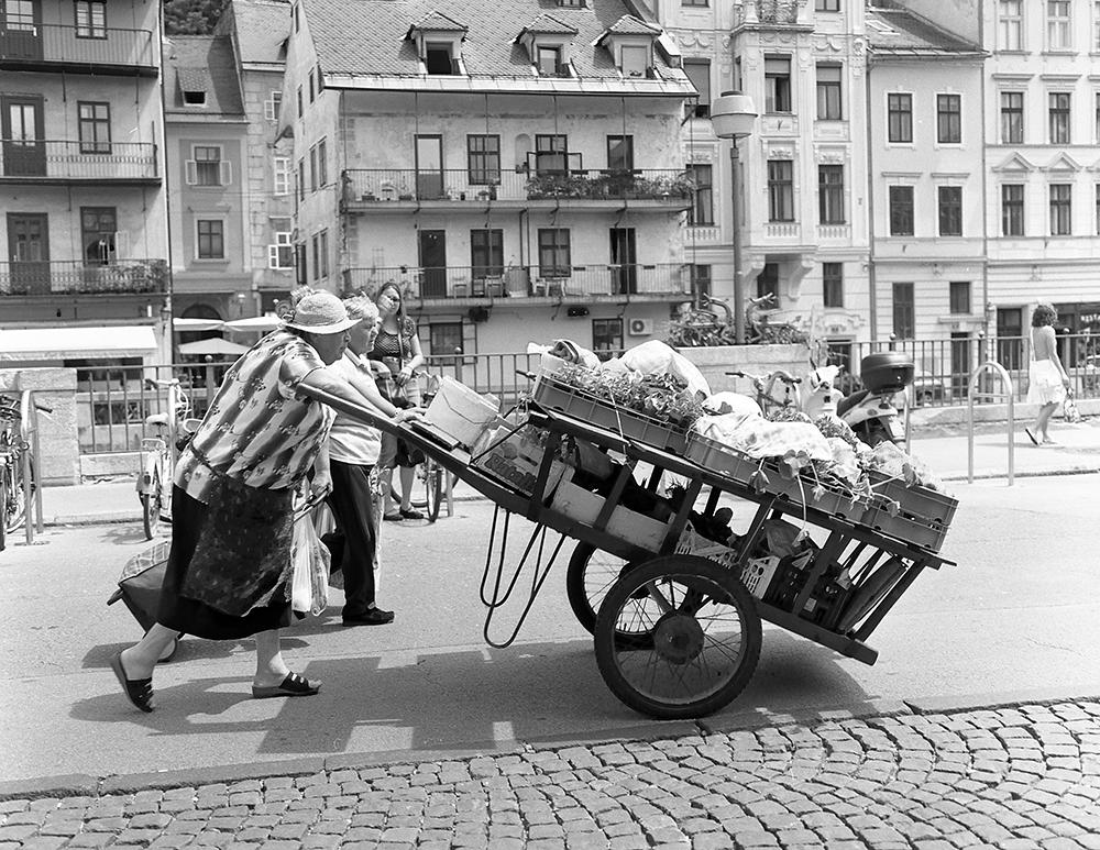 Market day, Ljubljana